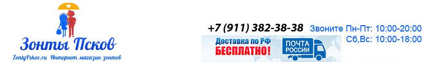Зонты Псков
